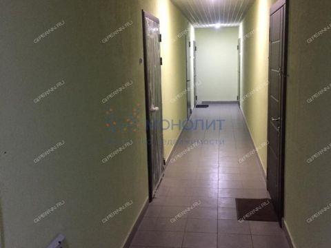 kvartira-studiya-derevnya-afonino-kstovskiy-rayon фото