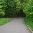В Нижнем Новгороде хотят  разбить новый парк