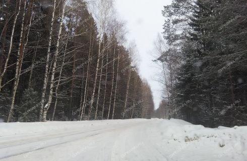 1-komnatnaya-poselok-burevestnik-gorodeckiy-rayon фото