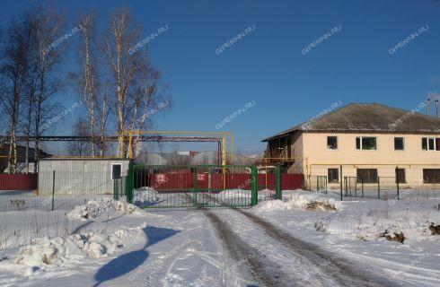 poselok-kudma-bogorodskiy-rayon фото
